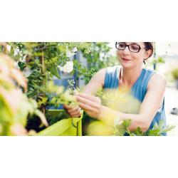 PROMO Fermob Terrazza Bloemen/Planten Bak Small
